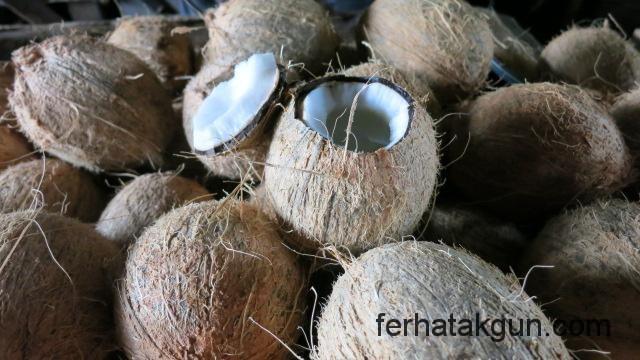 Kokosnuesse in Kilwa Masoko