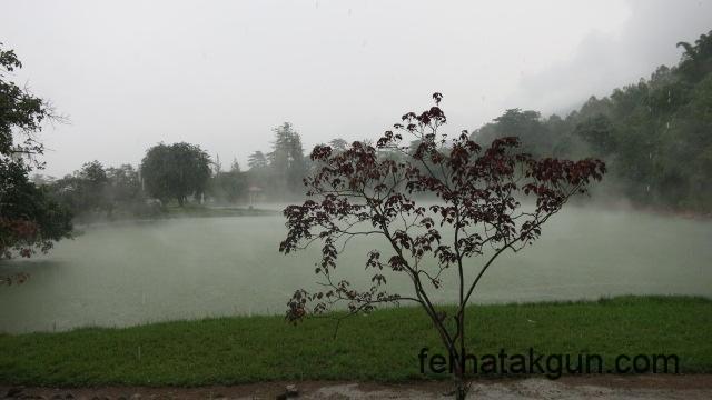 Nebel nach dem Regen