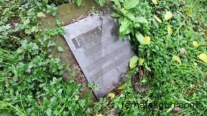 Bukoba, Tansania, Tanzania, Afrika, Africa, Friedhof, Cemetery, Deutsch, Weltkrieg, Vogl