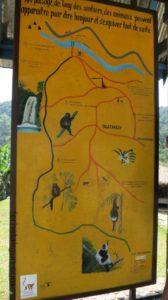 ranomafana-ubersicht-nationalpark