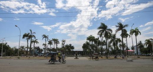 Toamasina - Palmen