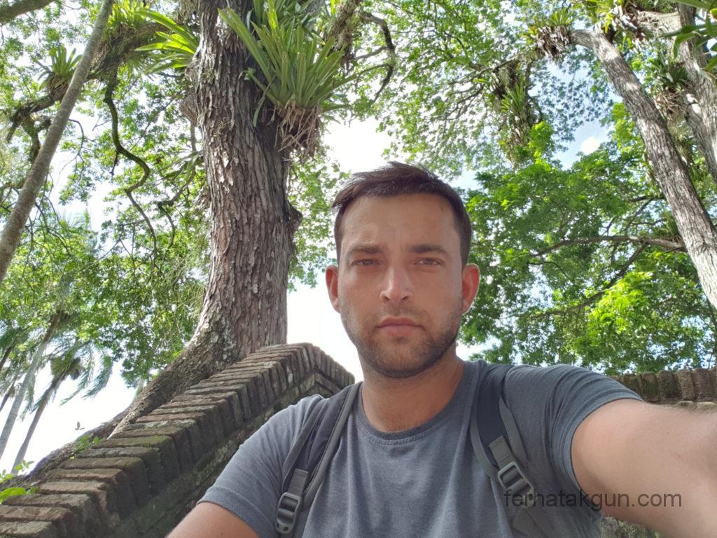 Paramaribo Palmentuin