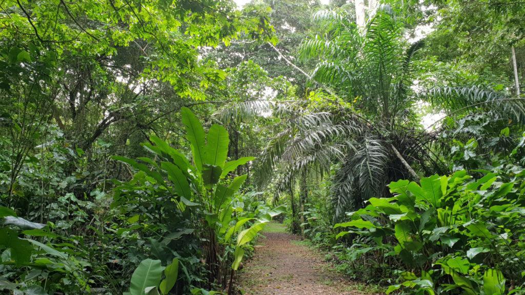 Meerzorg Peperpot Nature Park