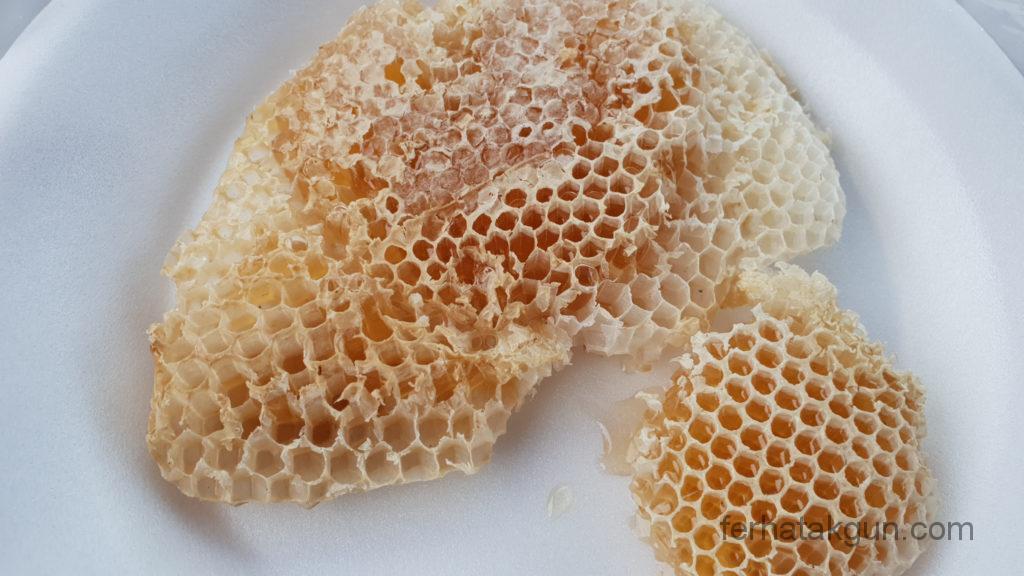 Coronie Totness Friendship - Honig Honing