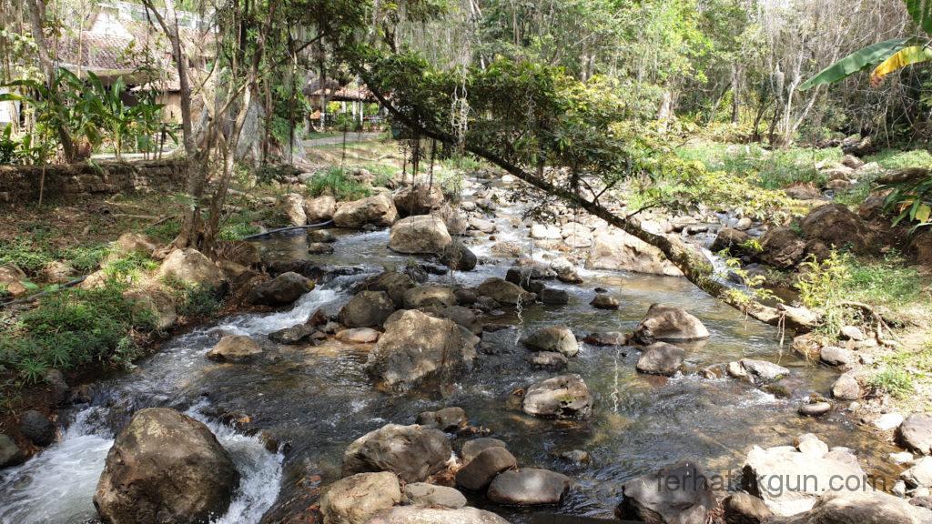 El Gallineral - Fluss