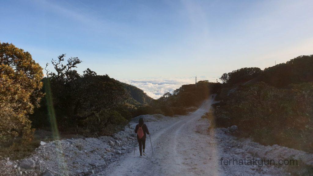 Volcán Barú - Der Abstieg